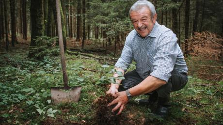 Quirin Krötz kandidiert nicht wieder als Bürgermeister in Rott. Für die Zeit danach hat er schon einige Ideen. Eine davon ist, seinen Fichtenwald mit Laubbäumen umzubauen, die den Klimawandel vertragen.