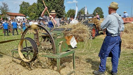 Jede Menge geboten war auch dieses Jahr beim Geltendorfer Dreschfest. Viele historische Geräte kamen zum Einsatz.