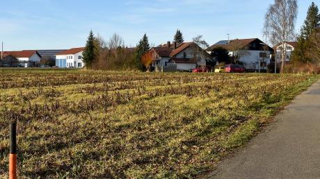 Auf dieser Fläche in Penzing soll das neue Baugebiet entstehen.