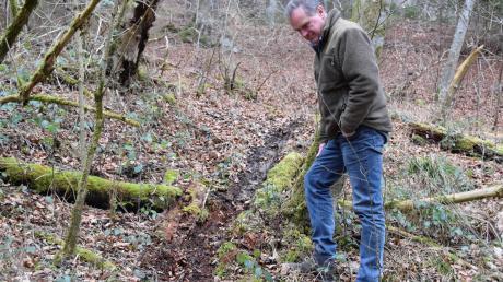Förster Stefan Bauernfeind stoßt an einem Hang am Lech auf Spuren von Motocrossfahrern, die hier illegal unterwegs sind. Sie stören hier in einem geschützten Gebiet eine streng geschützte Art, den Uhu.