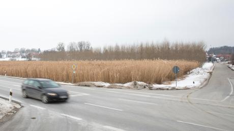 Auf diesem Feld südlich von Finning sollte ein Discounter entstehen. Die Fläche befindet sich gegenüber dem Gewerbegebiet Lerchenberg.