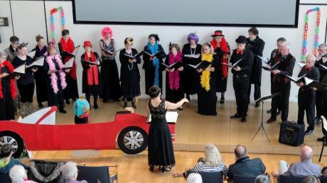 Der Chor Vox Villae bei seinem Auftritt im Sitzungssaal des Landratsamts. Vorne ist Chorleiterin Cornelia Utz zu sehen.