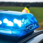 Bei einem Verkehrsunfall auf der B2 bei Westendorf ist ein Pferd mit einem Lastwagen zusammengestoßen und an den Folgen gestorben.