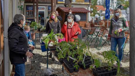 Gut besucht war am Samstag die Pflanzentauschbörse des Erpftinger Gartenbauvereins.