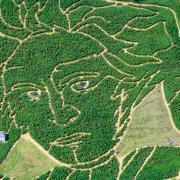 Das Labyrinth Ex Ornamentis zeigt heuer Ludwig von Beethoven.