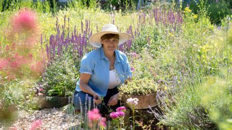 Urwüchsig und wild erscheint der Garten von Christa Bauer. Und tatsächlich geht es der Vorsitzenden des Gartenbauvereins Weil nicht nur um schöne Blüten: Diese sollen auch insektenfreundlich sein.