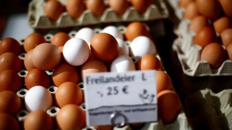In einem Lengenfelder Eierhäuschen wurden zuletzt mehrere Diebstähle registriert, wie die Polizei mitteilt.