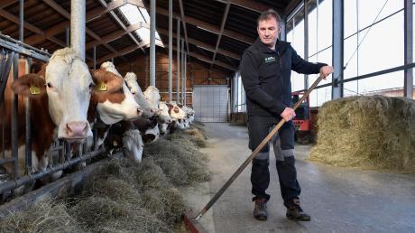 Bernhard Drexl aus Schwifting ist stellvertretender Kreisobmann des Bauernverbands. Er sieht die Landwirte aktuell mit vielen Problemen konfrontiert und wünscht sich mehr Solidarität, auch von den Verbrauchern.