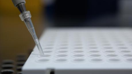 Im Landkreis Landsberg sind weitere Fälle mit Corona-Mutationen bestätigt worden.