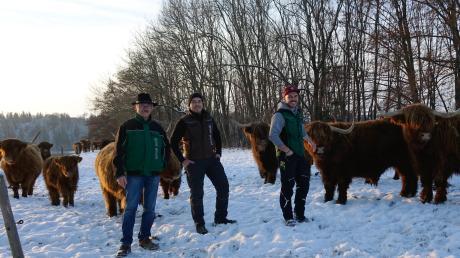 Die Highland Cattles  sind ein beliebtes Fotomotiv: Ernst, Dominik und André Strobl (von links) haben sich aber nicht nur wegen des Aussehens für diese Rasse entschieden.