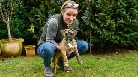 Monika Rätzel ist verwundert darüber, dass die Verwaltungsgemeinschaft Fuchstal eine Unbedenklichkeitsbescheinigung für ihre Englische Bulldogge Nelli verlangte.