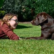 Mensch und Tier, Auge in Auge: Stephanie Schön aus Landsberg, hier mit ihrem Hund Shanti (Labrador-Retriever), ist 21 Jahre alt und hat vor Kurzem ihre eigene Hundeschule gegründet.