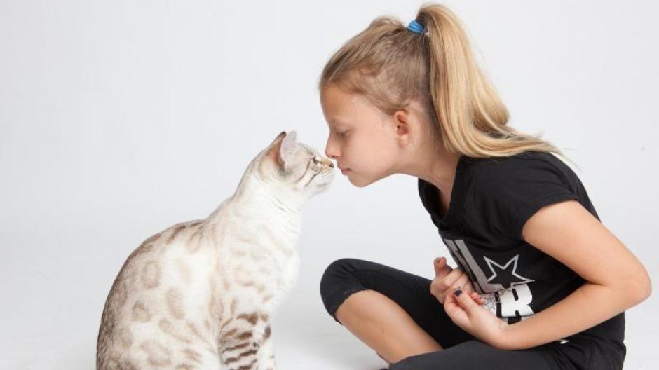 Haustiere Trotz Allergie Tiere Fur Allergiker