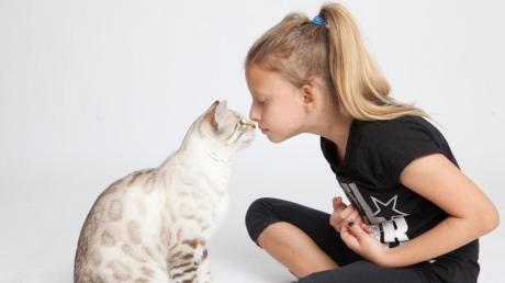 Viele Kinder wünschen sich Katzen als Haustiere. Wenn aber Allergiker im Haus leben, kann das schnell zum Problem werden.