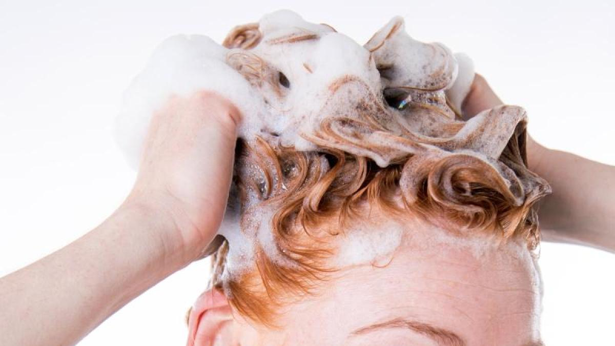 Überraschender Sieger: Shampoo: Schuppen wird man auch für wenig ...