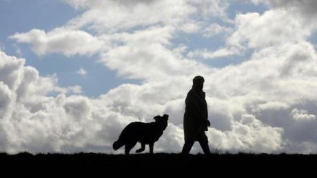 Bringt man dem Hund schon früh bei, auf bestimmte Kommandos zu hören, kann man das Risiko minimieren, dass er beim Gassigehen einen Giftköder frisst. Foto: Uwe Zucchi