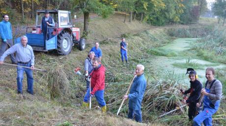 Mit Schneidegeräten, Heugabeln und Bulldog rückten Mitglieder des Gartenbauvereins Jahr für Jahr dem Biotop bei Matzenhofen zu Leibe.