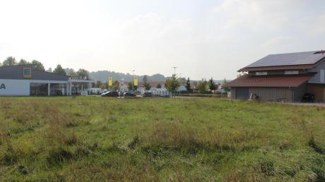 Auf dieser Wiese in Leder soll das Motel mit 15 Zimmern entstehen. Die ersten Gespräche dazu gab es vor acht Jahren.