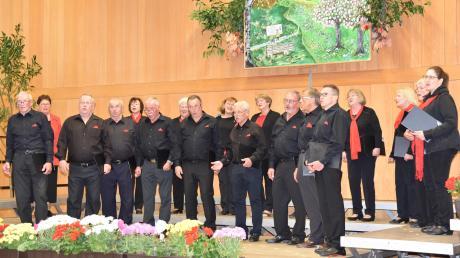 """Unter dem Motto """"So schnell vergeht die Zeit"""" gab der Chor Harmonia Illereichen ein Konzert in der Schulturnhalle in Altenstadt. Dabei ehrte er Sabine Ströhle, die die Formation seit zehn Jahren leitet."""