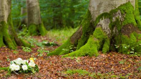 Noch liegen die Pläne für den ersten Naturfriedhof Südbayerns in Bergheim auf Eis.