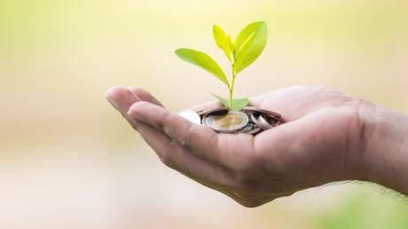 Nachhaltige Geldanlagen werden für viele Bürger wichtiger.