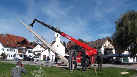 Maschinenkraft statt Muskelkraft war auch beim Maibaumaufstellen im Dießener Ortsteil Wengen am Sonntag das Mittel der Wahl.
