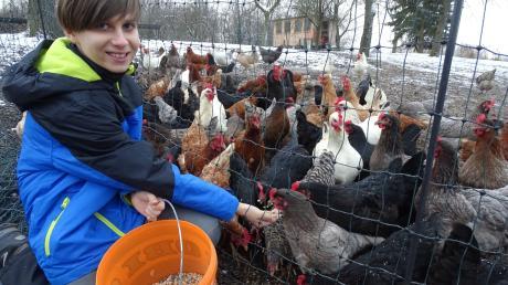 Der elfjährige Lorenz Biehler ist eine der wichtigsten Bezugspersonen für die rund 140 Hühner der Familie. Wenn er zum Streicheln und zum Füttern kommt oder um die Eier einzusammeln, hat er gleich die ganze Meute um sich versammelt.