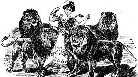 Eine Dressur mit Löwen in der Menagerie Holzmüller.