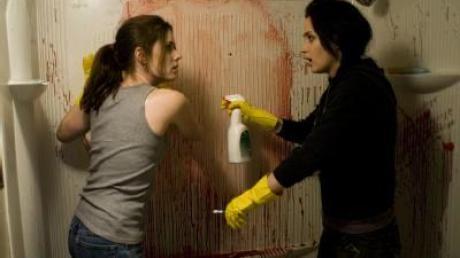 «Sunshine Cleaning»: Zwei Frauen suchen ihr Glück
