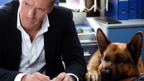 Rex und Kommissar Lorenzo Fabbri (Kaspar Capparoni) grübeln über den aktuellen Fall. Bild: ZDF/Bruno Rukauer