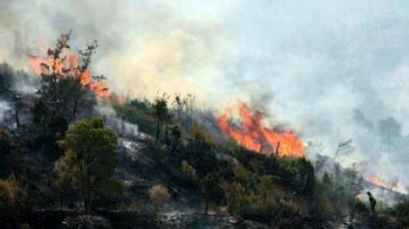 Im Mittelmeerurlaub: Nach Brandgefahr erkundigen