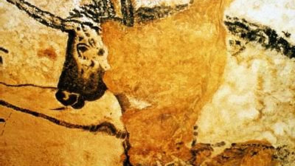 steinzeit-kunst  die h u00f6hlenmalereien von lascaux