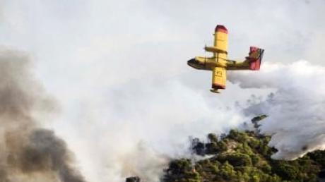 Waldbrände und Hitze inSpanien und Portugal