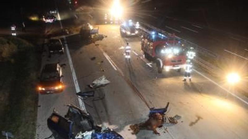 Pferde Auf Der Autobahn Ein Toter Bei Unfall Promis Kurioses Tv