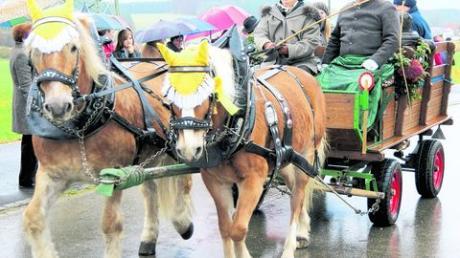 Ross und Reiter locken Besucherscharen an