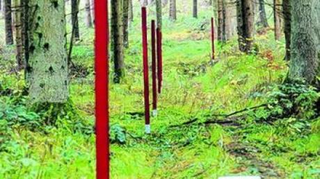 Rote Stelen deuten die Umrisse der Gebäude im Wald an.