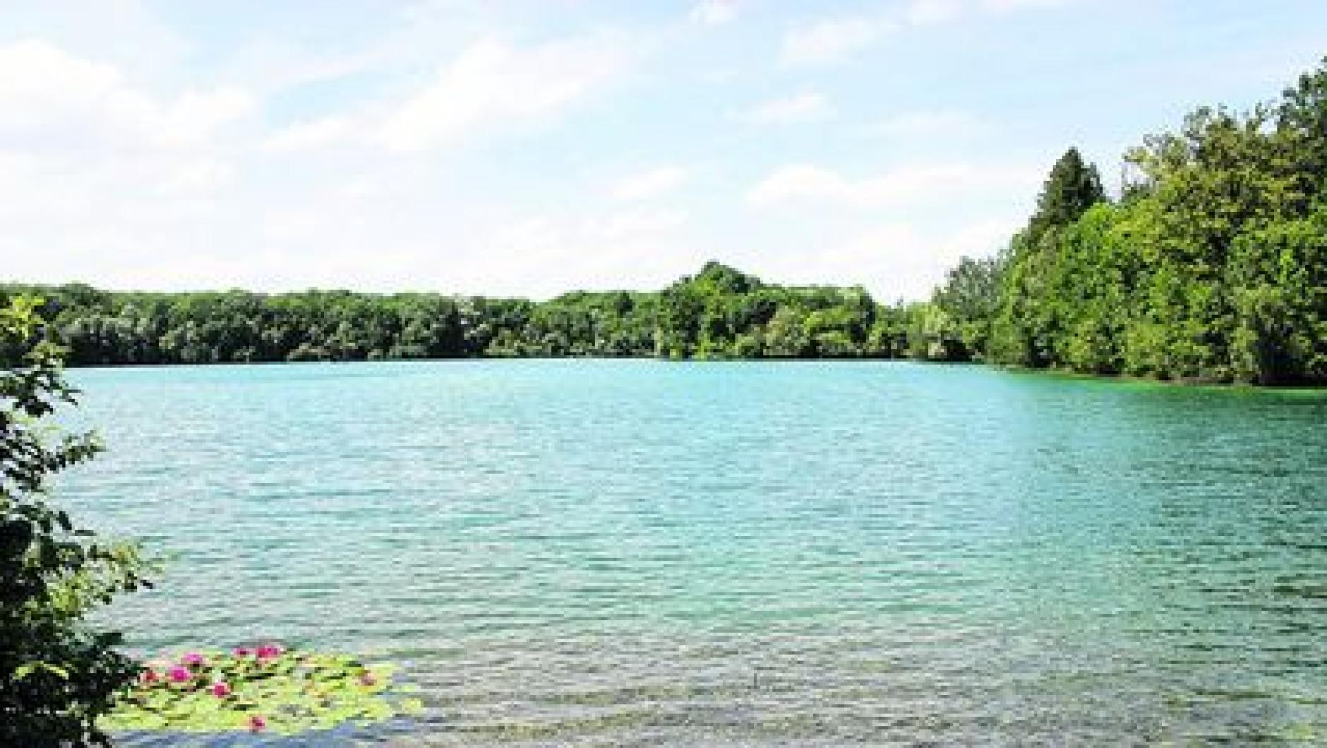 Wilder Sex am Baggersee erregt die Gemüter   Neu-Ulmer Zeitung