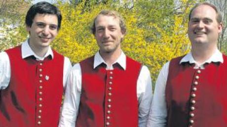 Thomas Rauch gab das Amt des Vorsitzenden an Hermann Bader ab, der es zusammen mit dem wiedergewählten Norbert Lutz ausüben wird (v. li.).