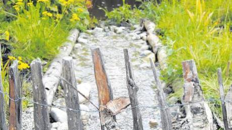 Wird das Wasser künftig ausgesperrt? In den Sommerferien will das Landratsamt entscheiden, ob der Brunnenbach, hier ein kleiner Zufluss am Naturlehrgarten in Mindelheim, trockengelegt wird.