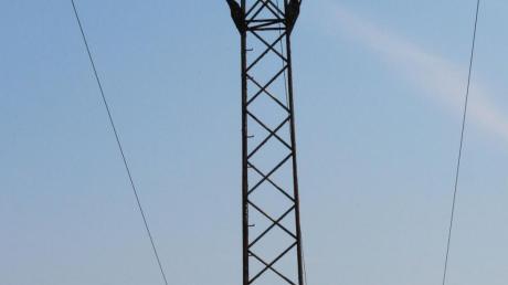 28 Hochspannungsleitungen ziehen quer durch das gesamte Gemeindegebiet in Breitenbrunn. Die LEW möchte die Stromtrassen nach 75 Jahren komplett erneuern.