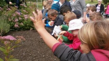 """Auch Pflanzaktionen gehören in den Kindertagesstätten zum Programm der """"ÖköKids."""""""