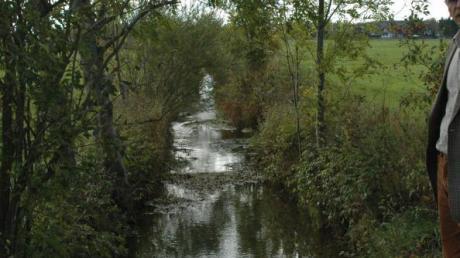 Im östlichen Teil des Gemeindegebiets soll ein Wasserlauf neben dem Hungerbach bei Starkregen Wasser aufnehmen.
