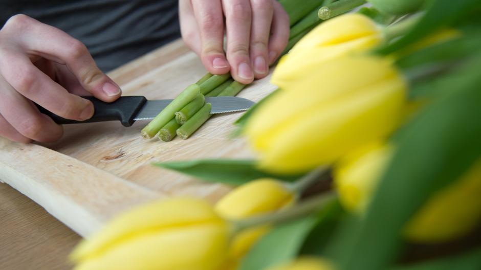 Pflanzen So Bleiben Blumen Langer Frisch Nachrichten Mindelheim