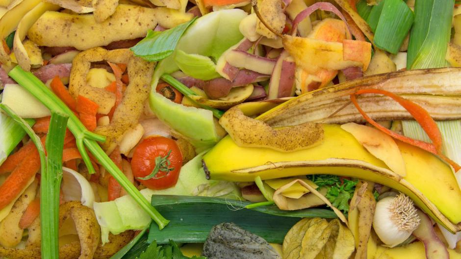 Biomüll Im Sommer Küche : Biomüll nabu