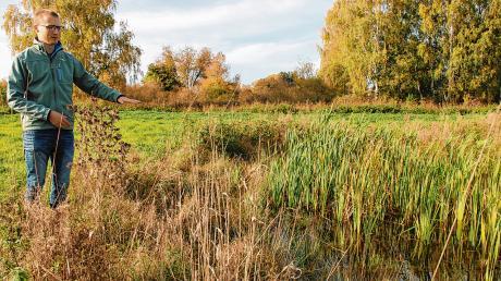 Maximilian Simmnacher, Fachkraft für Naturschutz von der Unteren Naturschutzbehörde am Landratsamt in Mindelheim, zeigt Ausgleichsflächen, welche die Gemeinde Boos in der Nähe zum Booser Ried geschaffen hat.