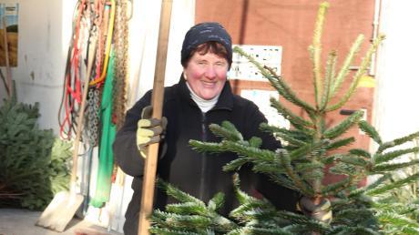 Mit einer langen Holzlatte misst Petra Waltenberger großzügig. Der laufende Meter Christbaum kostet bei ihr dann so etwa zehn 20 Euro.