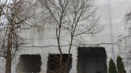 Ein Großfeuer hat an der Mindelheimer Agrarhandelsfirma Weikmann einen Millionenschaden angerichtet. Nun geht es um die Frage, wie das Gelände am Bahnhof neu gestaltet werden kann.