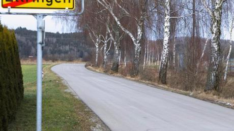 Heute sollen die Birken am Radweg nach Siebnach gefällt werden.