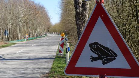 Für die Zeit während der Krötenwanderungen im März und Anfang April wurde entlang der Verbindungsstraße durch den Wald temporär eine Tempo-30-Zone ausgewiesen.