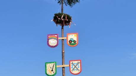 Nicht überall werden heuer die Maibäume fehlen. In Ohnsang haben Jonathan und Mathilde Huber gemeinsam mit ihren Eltern einen kleinen, aber feinen Maibaum hergerichtet und aufgestellt. Und wenn es das Wetter zulässt, wird sich die Familie auch zu einem kleinen Grillfest dort treffen.